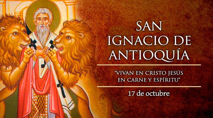 San Ignacio De Antioqu 205 A 17 De Octubre Di 243 Cesis De