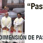DESDE LA  CEM: Pastoral de la Cultura: Qué es y cuáles son sus desafíos.